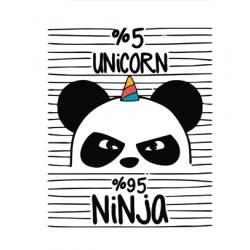 30% DTO. Cuadro Small Panda ninja