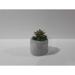 20% DTO. Planta artificial con maceta de cemento redonda