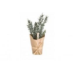 30% DTO. Plantin artificial Romero