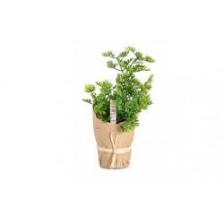 30% DTO. Plantin artificial Perejil