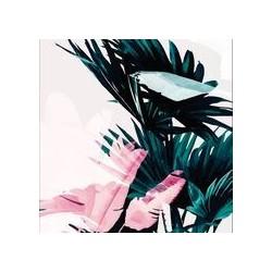 Lamina para cuadro chico Botanico rosa A